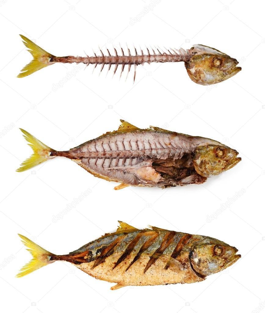 Espinha de peixe com peixe frito fotografias de stock for Fish bone broth