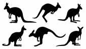 Kangaroo silhouettes — Stock Vector