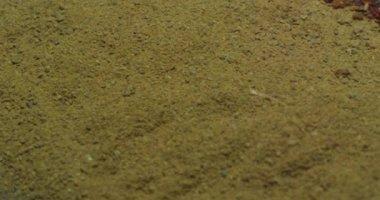 Spices cumin, paprika, turmeric, cinnamon. — Stock Video