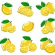 Lemon set — Stock Vector #56423437