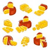 Different kinds of cheese set — Stock Vector