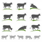 Cow animal set. — Stock Vector