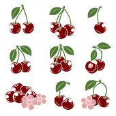 Cherries with leaves set — Stock Vector