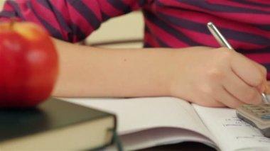 Schoolgirl doing her math homework — Video Stock
