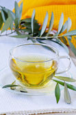 Olive leaf herbal tea. Dietary Supplements. — Stockfoto