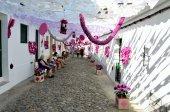 Flower Festival (festas do povo, Campo Maior 2015, Portugal) — Stock fotografie