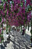 Flower Festival (festas do povo, Campo Maior 2015, Portugal) — Stock Photo