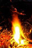 Tempo di esposizione lungo fuoco — Foto Stock