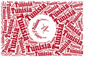 National flag of Tunisia — Foto de Stock