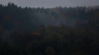 Evaporates forests in the Bieszczady Mountains — Stock Video