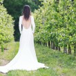 Woman in a white dress in the orchard — Stock Photo #76166897