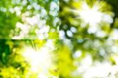 Mix of abstract images  — Stock Photo