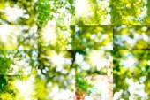 Mélange d'images abstraites — Stockfoto
