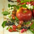 Image of red apples and berries on a wooden table closeup — Stock Photo #55319863