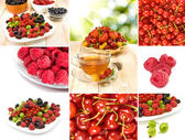 Various ripe berries on a white background — Stock Photo