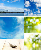 Different images of nature — Stock Photo