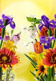 Imagen de muchas bellas flores en el jardín sobre un fondo amarillo — Foto de Stock