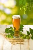 用啤酒和跳在绿色背景上的木桌上的杯子 — 图库照片