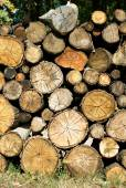 Dry firewood laid in a heap for kindling the furnace — Stock Photo