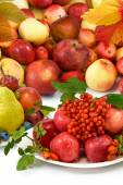 Different fruits closeup — Stock Photo