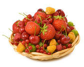 Isolated image of different berries in a bowl on a white background — Stock Photo