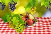 緑の背景にさまざまな果物 — ストック写真