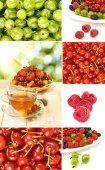Различные ягоды на белом фоне — Стоковое фото