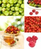 Различные спелых ягод на белом фоне — Стоковое фото