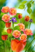 Beautiful tulips and roses — Stock Photo