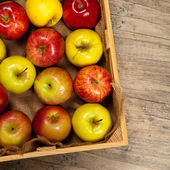 Organic apples — Stock Photo