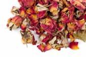 Dried tea rose flowers — Stock Photo