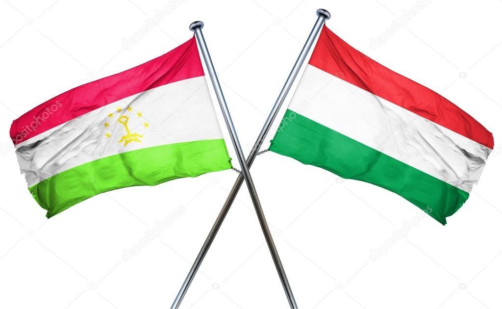 Душанбе и Будапешт договорились выдавать друг другу разыскиваемых преступников
