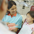 Indian female dental assistant showing model of teeth to young female patient — Foto de Stock   #52027123