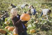 Girl smiling in pumpkin patch — Stock Photo