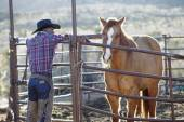 Young man in a cowboy outfit petting a horse — Stock Photo
