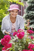 Woman pruning roses — Stock Photo