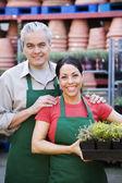 Hispanic couple working at garden center — Stock Photo