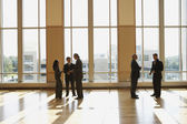 Group of businesspeople talking in sunlit room — Stock Photo