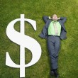 Asian businessman in grass next to dollar sign — Stock Photo #52040567
