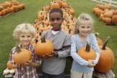 Children holding pumpkins — Stock Photo
