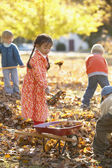 Children raking fall leaves — Stock Photo