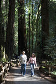 Asian couple walking in woods — Stock Photo