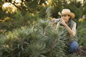 Asian woman taking photograph of plant — Stockfoto