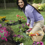 Hispanic woman gardening — Stock Photo #52071595