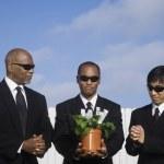 Multi-ethnic businessman with money plant — Stock Photo #52076901