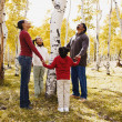 African family holding hands around tree — Stock Photo #52077955