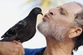 Man kissing bird — Fotografia Stock