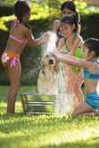 Group of Hispanic girls washing dog — Stock Photo