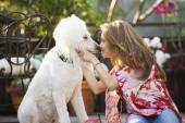 Hispanic woman rubbing noses with dog — Stock Photo