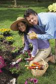 Hispanic couple gardening — Stock Photo